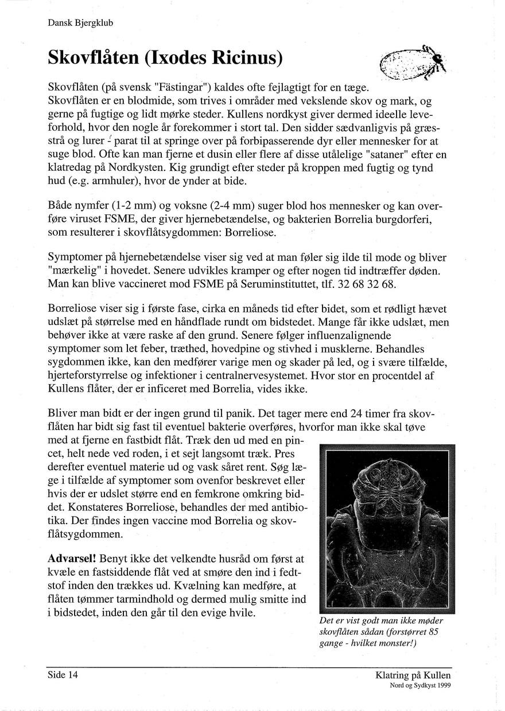 Klatring paa kullen 1999 side 014.jpg