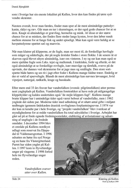 klatring paa kullen 1999 side 024.jpg