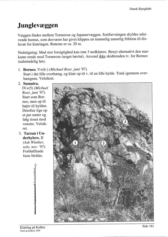 Klatring paa kullen 1999 side 181.jpg