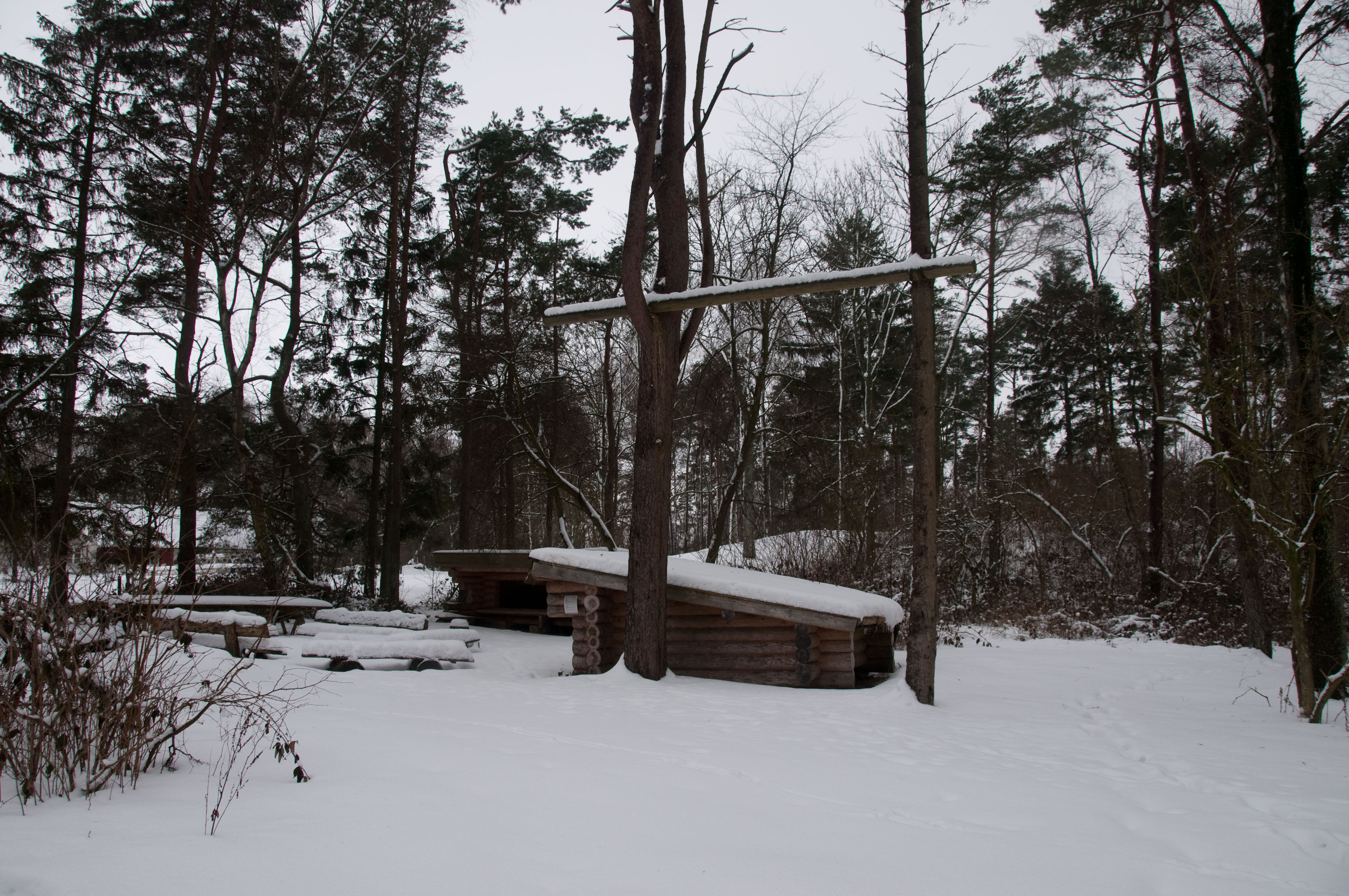 kullen vinter 2010 dsc4585.jpg