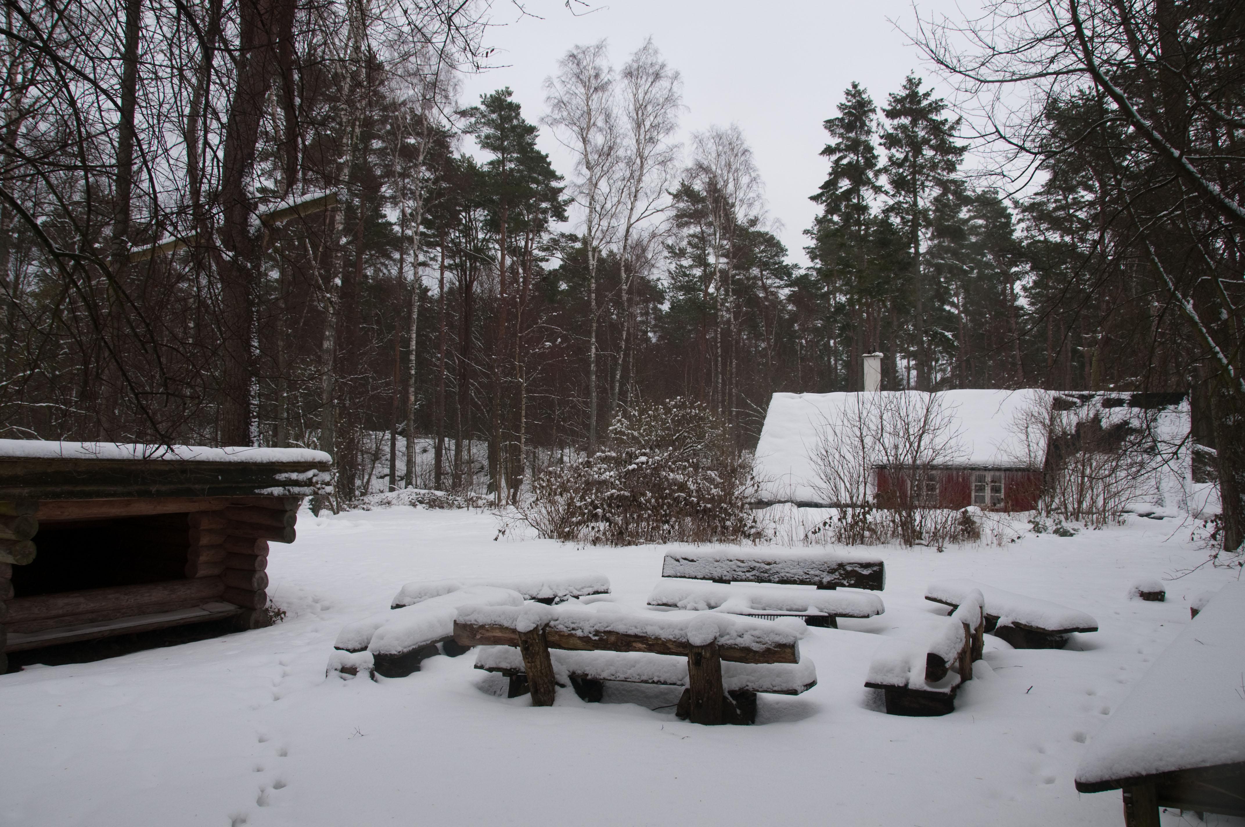 kullen vinter 2010 dsc4594.jpg